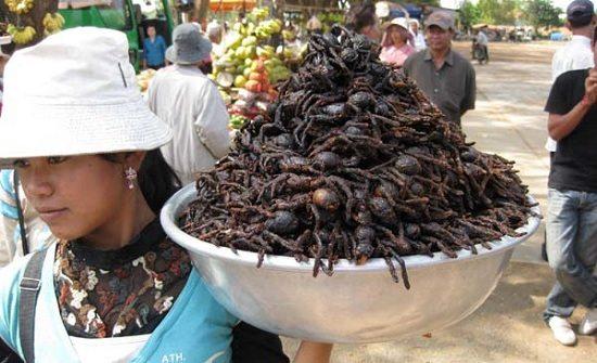 Du lịch Campuchia: Kỳ quan Angkor - thủ đô Phnompenh